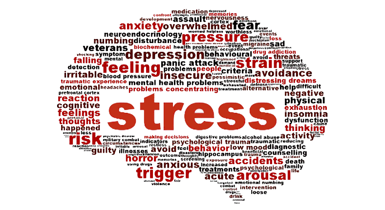 Words+that+can+be+associated+with+stress.+Courtesy+of+Hoye%27s+Pharmacy
