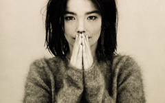 This is the cover art for Debut by the artist Björk. The cover art copyright is believed to belong to the label, One Little Indian, or the graphic artist(s).